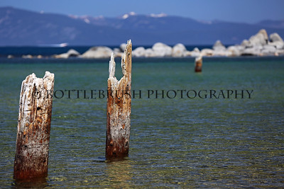 Wooden posts in the shallow waters of Lake Tahoe.