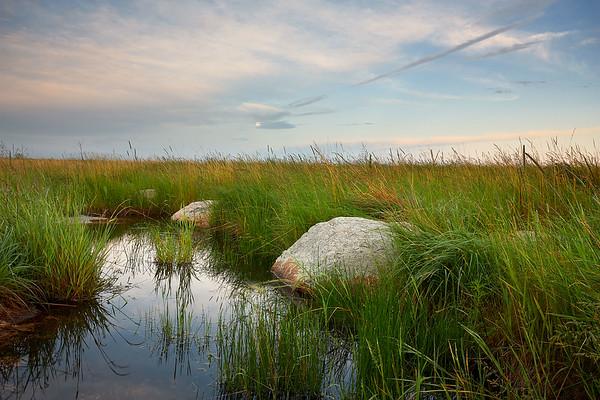 Prairie Wetland