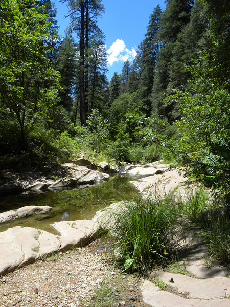 West Fork in Oak Creek