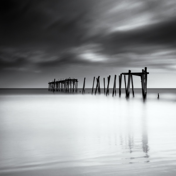 Standing Tall Against The Wind - 59th Street Pier OCNJ<br /> <br /> © Scott Frederick Photography : All Rights Reserved