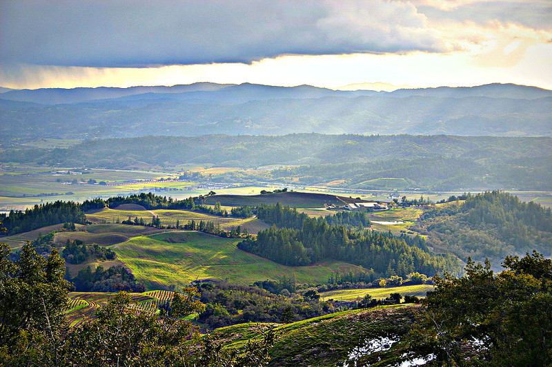 Alexander Valley Winter