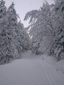 Dezember 28, 2012-00001