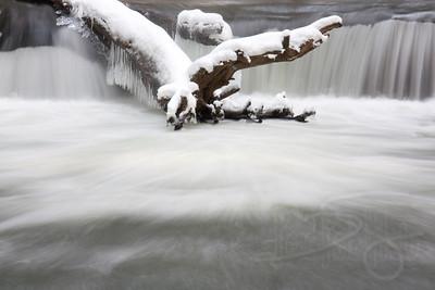 Whatcom Falls Park. Bellingham, WA