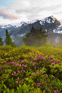 Alpine sunset. Artist Point. Mt. Baker-Snoqualmie National Recreational Area, WA.
