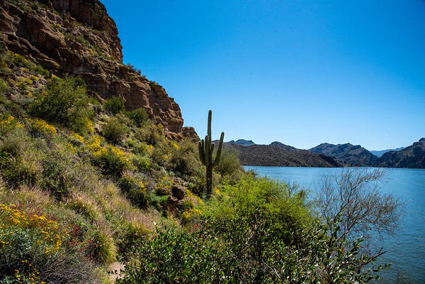 Saguaro Lake Arizona