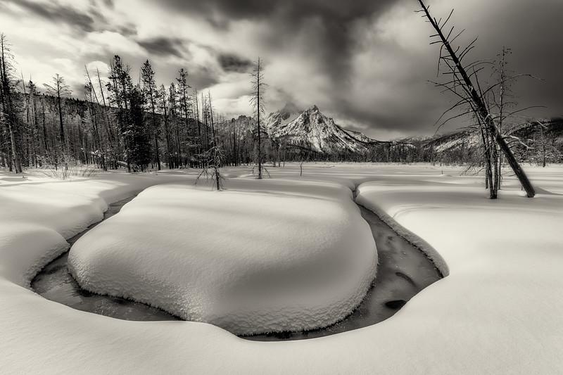 Stanley LAke Marsh on a winter morning