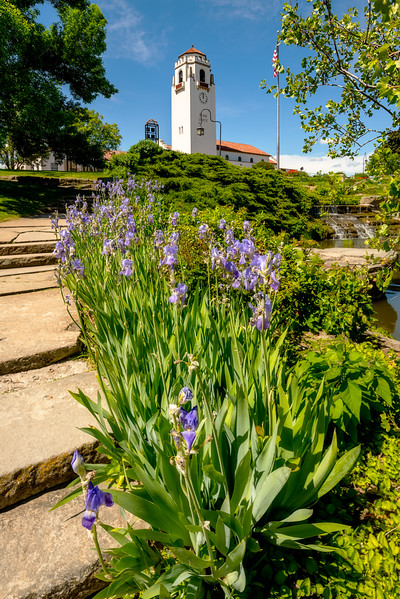 Blue Iris flowers and train depot at city park