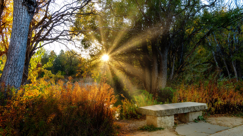 Sunburst forms behind a city park bench in the morning