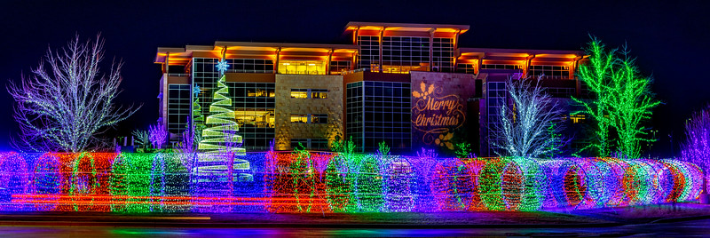 Local Meridian Business with park dressed up in Christmas lights