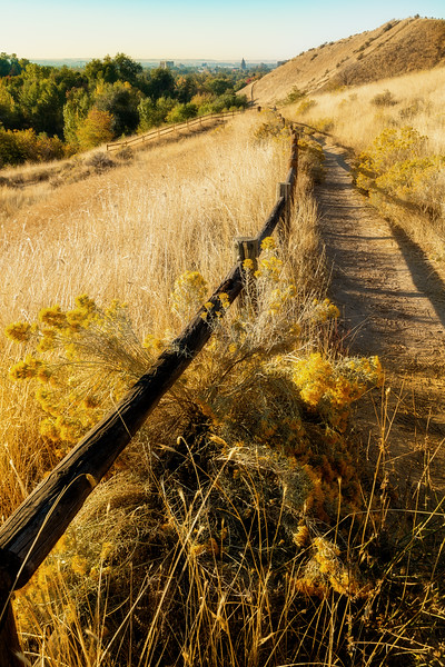 Trail in the foothills over Boise Idaho on a fall morning