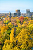 Boise, Idaho in the Autumn