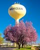 Meridian Water Tower with Flowering Tree
