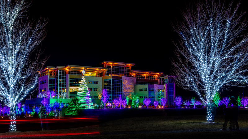 Local business in Meridian Idaho with many Christmas lights on display
