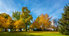 Fall trees at the city park near the depot in Boise Idaho