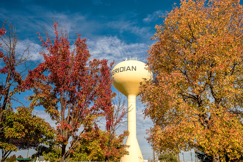 Autumn trees and the Meridian Idaho water tower