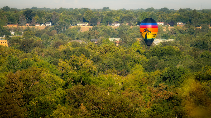 Single hot air balloon floats over the city of trees over a blanket of green