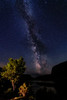 Vertical Milky Way over the Snake River Canyon