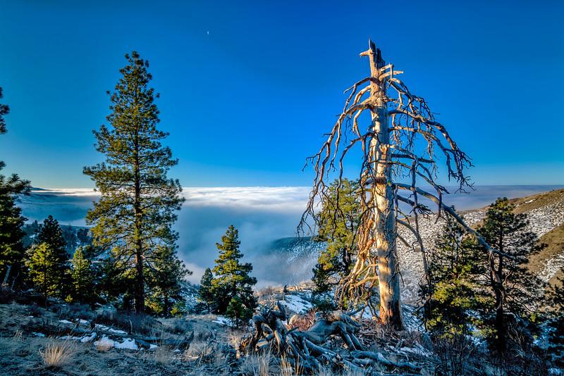 Boise Idaho Valley Inversion