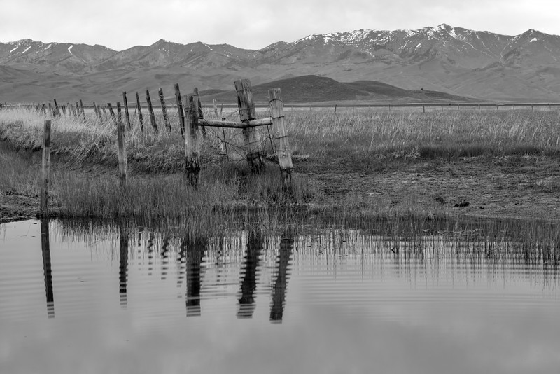 Black and White Pond with Mountains