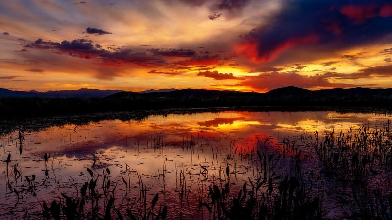 Sunrise over the Centennial Marsh pond