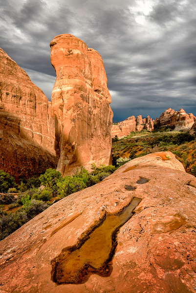 Puddle of Water in Arches National Park