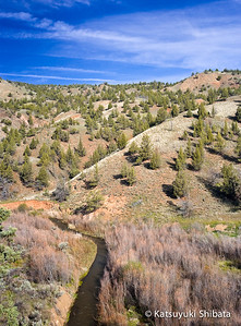 Hillside View, near Painted Hills, John Day Fossil Beds National Monument, Eastern Oregon - April 2007