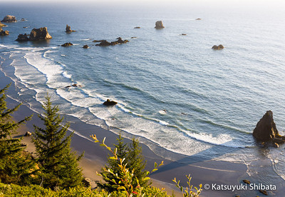 China Beach Samuel H. Boardman State Scenic Corridor Curry County, Southern Oregon Coast