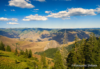 Hells Canyon, Northeastern Oregon - July 2005