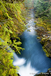 Opal Creek #3, Opal Creek Wilderness - November 2011
