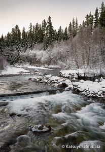 Breitenbush River Revisited #2 Oregon Cascade Foothills, January 2013