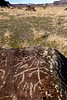 Large bolder with ancient Petroglyphs etched into with and distant Owyhee mountains