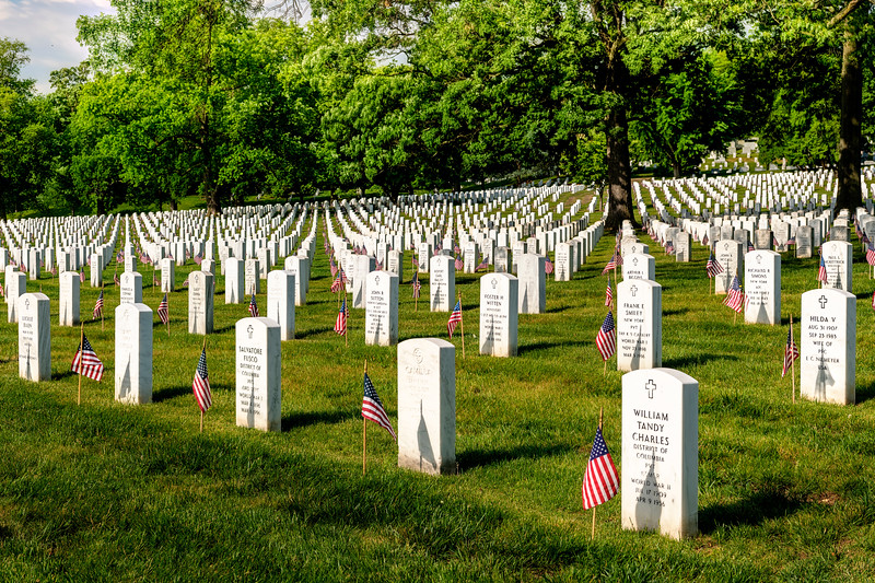 Arlington grounds are dotted with the grave stones of our fallen hero's