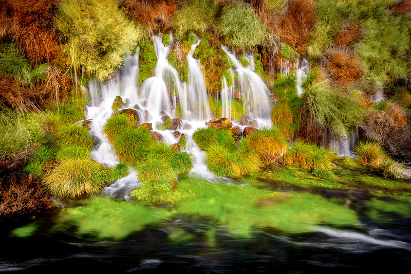 Thousand Springs in winter with green bushes