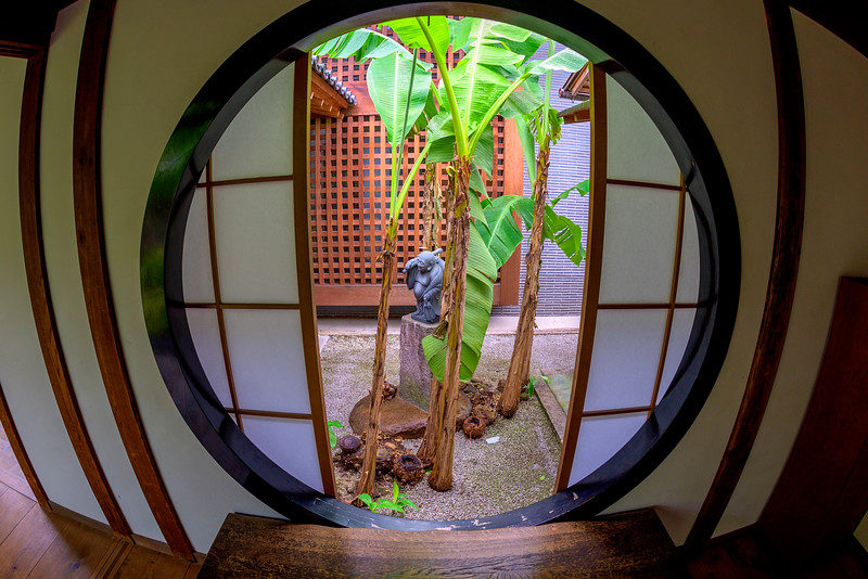 Looking our a Japanese window to a stone and palm garden