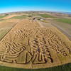 Areal Corn Maze fields and farm