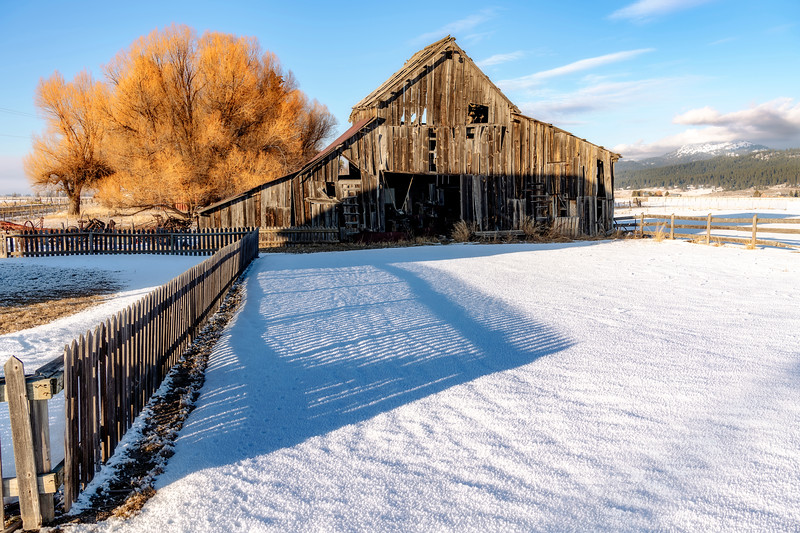 Roseberry Barn winter with fence shadow