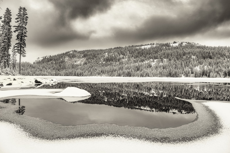 Black and White Upper Payette Lake forest reflection