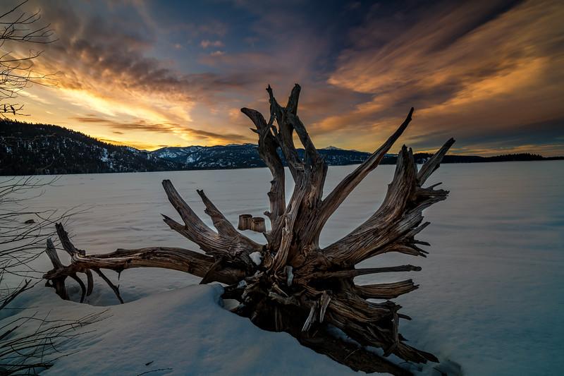 Little Payette Lake stump and dramatic sunrise