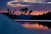 Orange sunset and pine limb Payette Lake Idaho