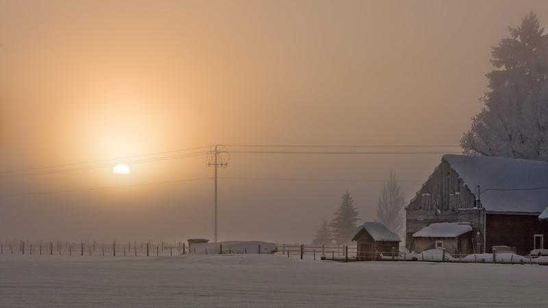 Sunrise through the fog winter family farm