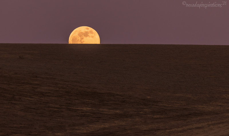 Rio Vista Super Moon
