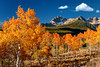 Autumn colored Aspens on Fishhook Creek in the Sawtooths