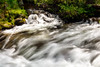 Slow motion water flowes in a creek Idaho wilderness