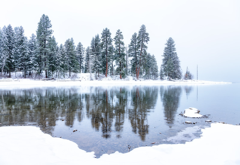 Winter morning forest reflection in Payette Lake