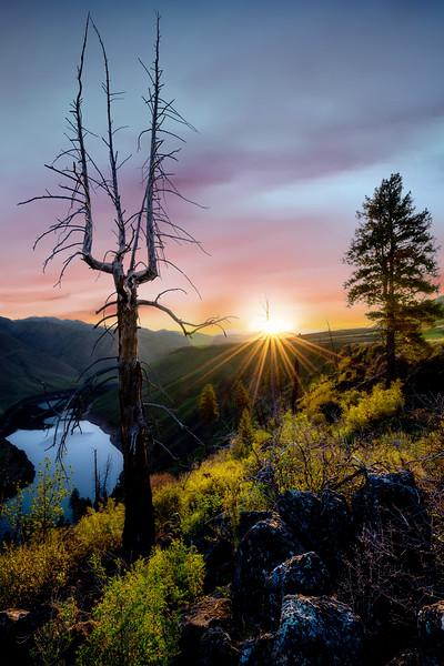 Sunrise sunburst over the South Fork of the Boise River
