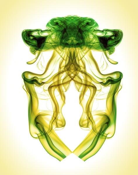 The Jellyfish Mantis
