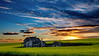 Sunrise over old Schoolhouse with Canola field
