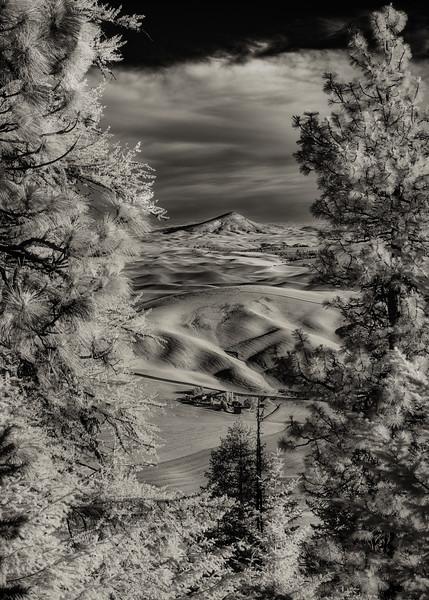 Steptoe Butte seen from Kamiak Butte Infrared Black and White