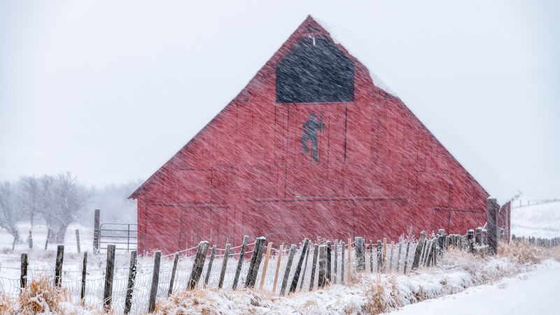 Snow storm against a red barn with fence