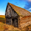 Warm light of evening paints a log building built by the Finnish people years ago